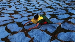 A woman in Bangladesh laying leather out to dry